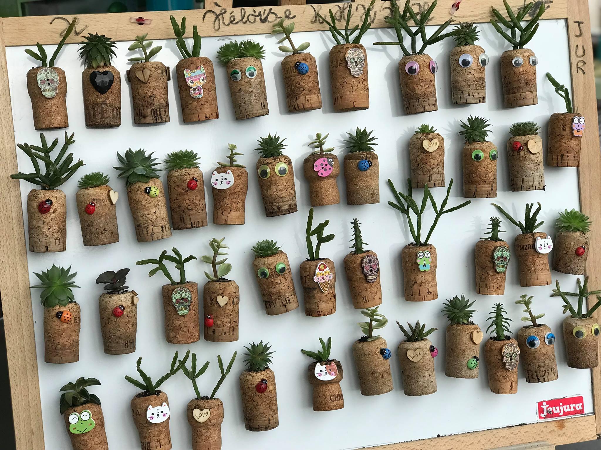 atelier de plantation de cactus dans des bouchons en liège
