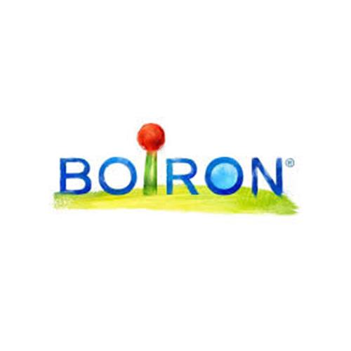 potager d'entreprise BOIRON